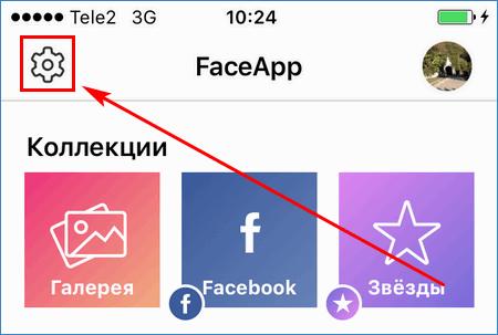 Кнопка настроек FaceApp